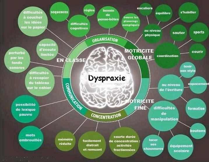Dyspraxie_Schéma