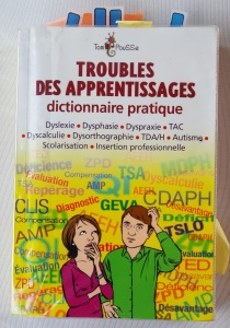 Dico des troubles_Photo couv