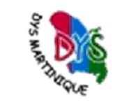 Dys Martinique_LOGO avec txt